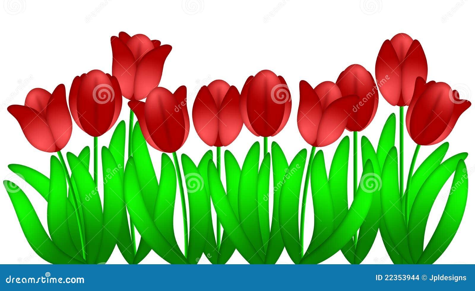 witte achtergrond tekening bloemen - photo #19