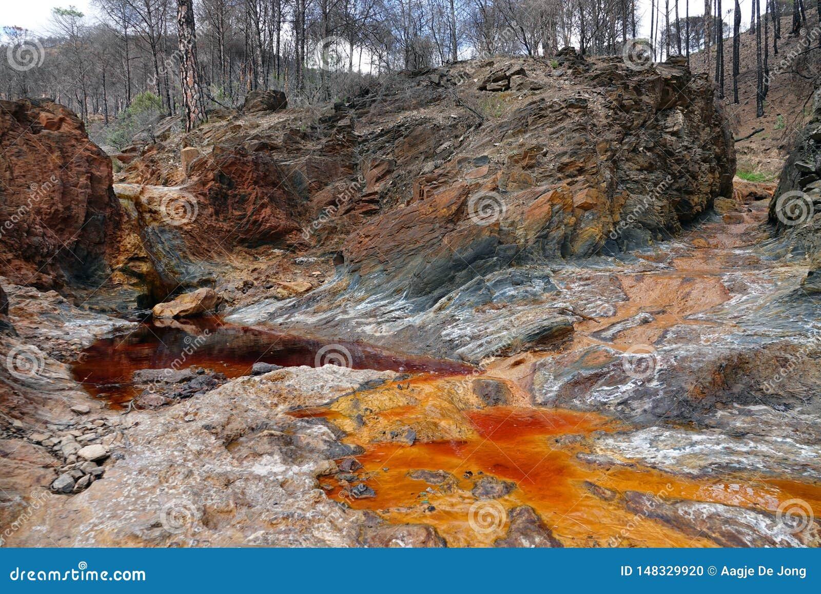 De rode en sinaasappel gekleurde rivier van Rio Tinto dichtbij Nerva in Spanje