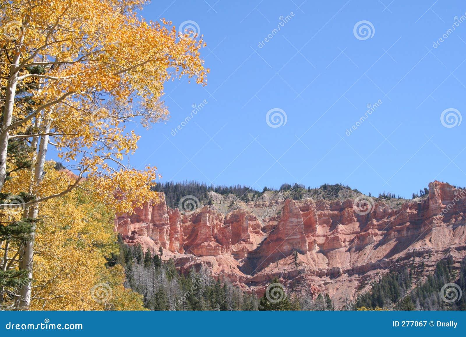 De rode Gele Bladeren van Rotsen