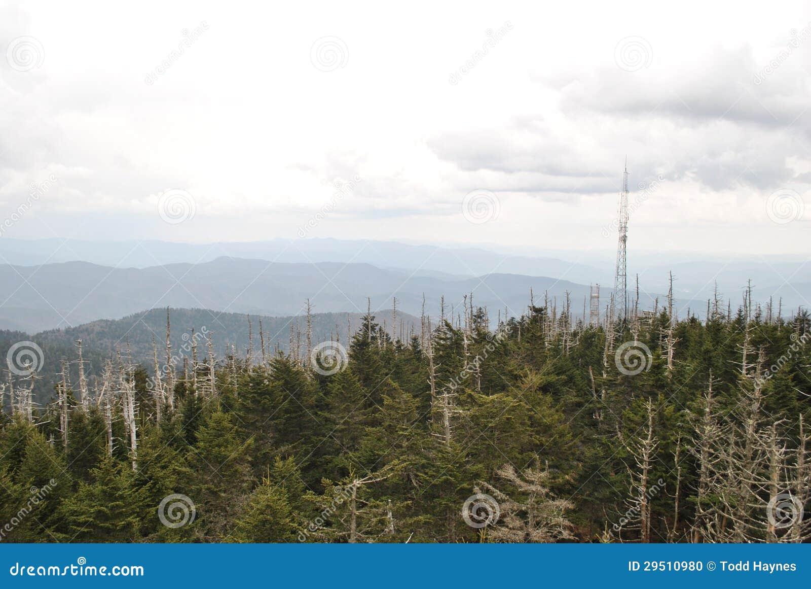 De Rokerige Bergen van de Koepel van Clingmans