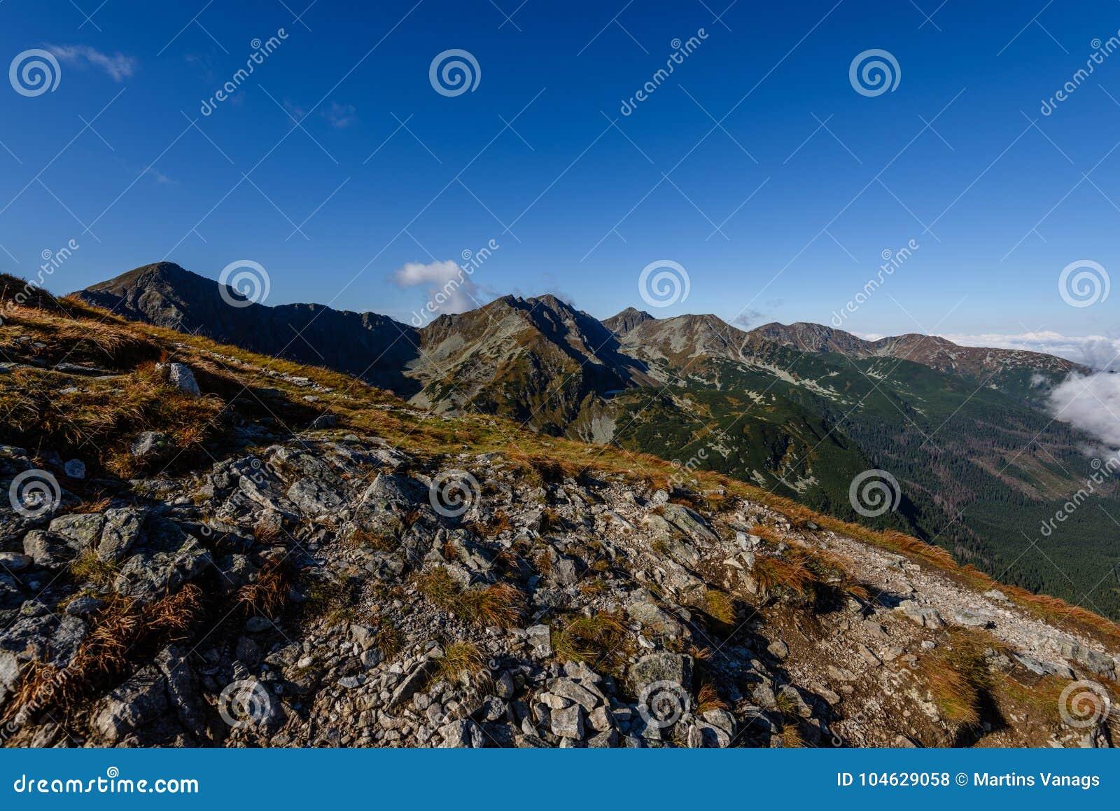 Download De Rotsachtige Mening Van Het Berg Piekgebied In Slowakije Stock Foto - Afbeelding bestaande uit nave, installatie: 104629058