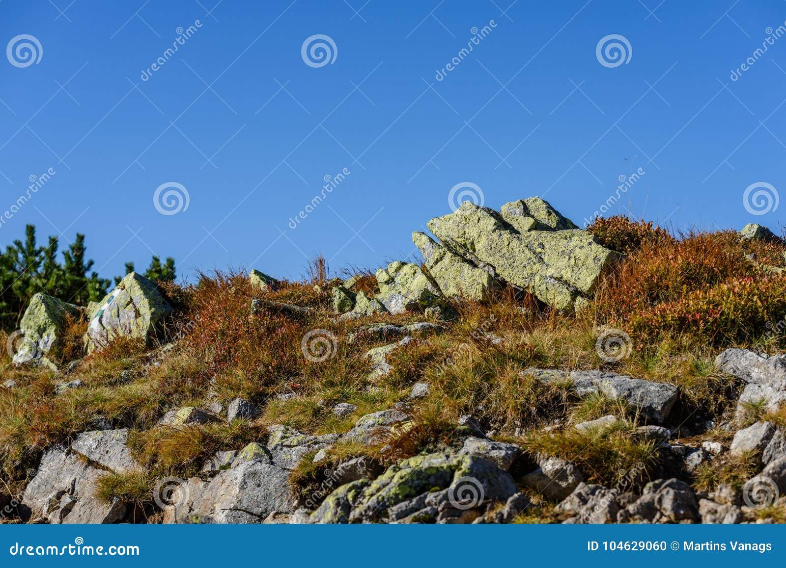 Download De Rotsachtige Mening Van Het Berg Piekgebied In Slowakije Stock Foto - Afbeelding bestaande uit mist, uitstraling: 104629060