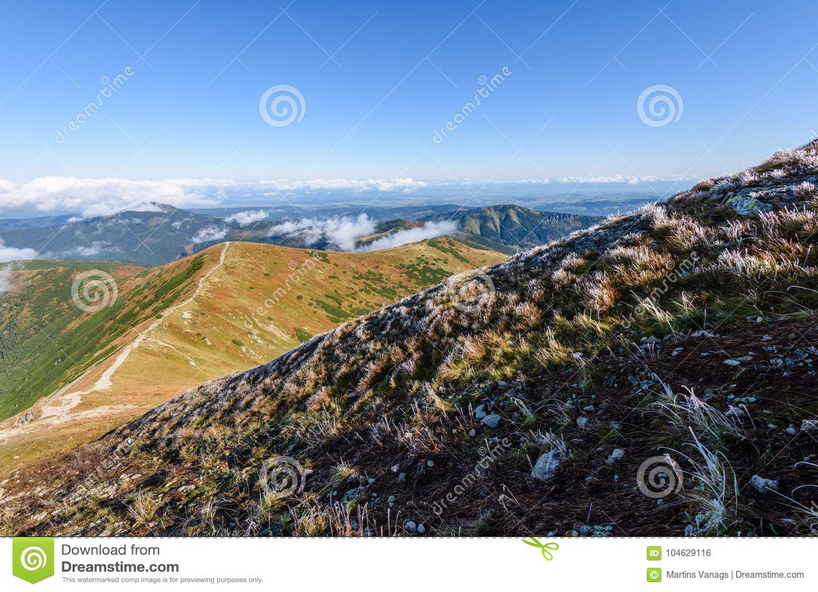 Download De Rotsachtige Mening Van Het Berg Piekgebied In Slowakije Stock Foto - Afbeelding bestaande uit majestic, nevelig: 104629116