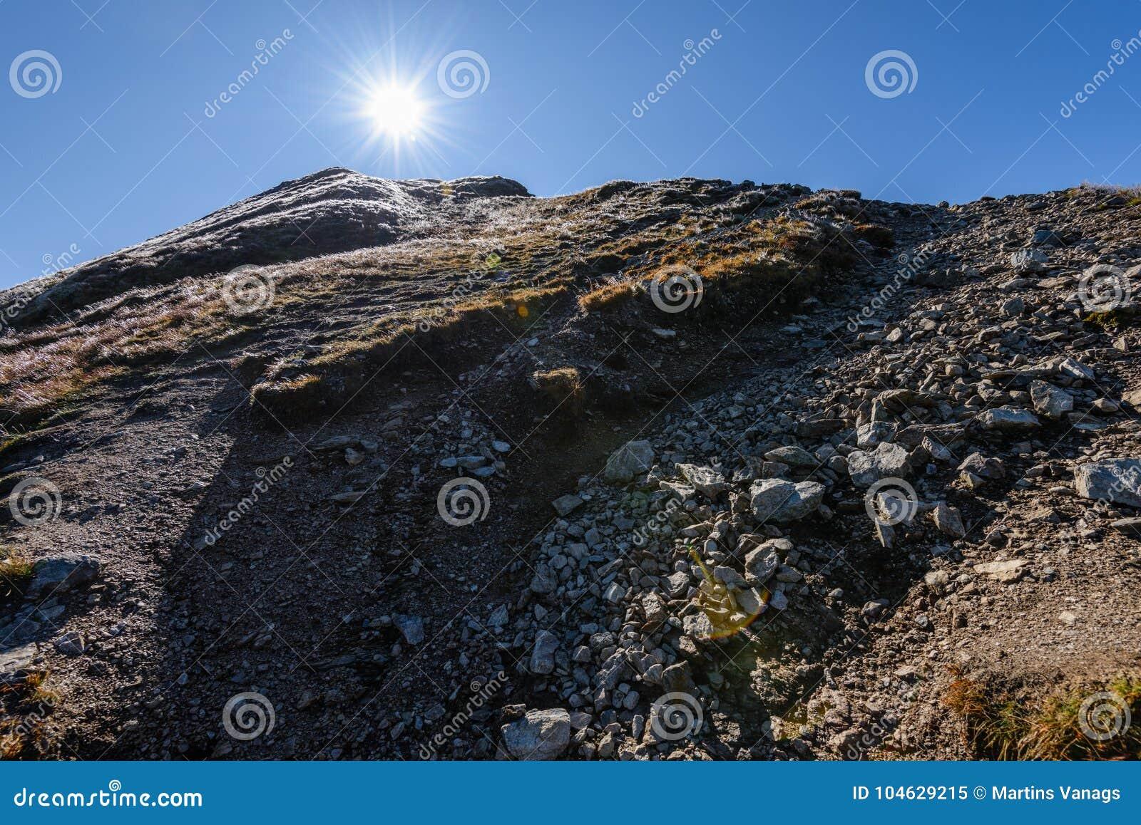 Download De Rotsachtige Mening Van Het Berg Piekgebied In Slowakije Stock Afbeelding - Afbeelding bestaande uit geheimzinnigheid, altijdgroen: 104629215