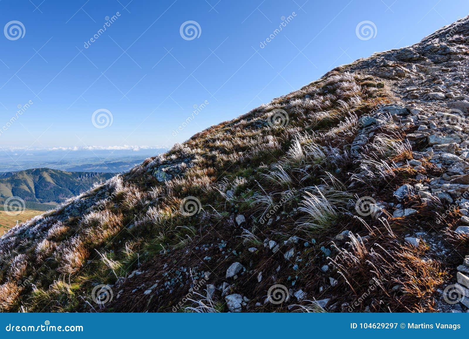 Download De Rotsachtige Mening Van Het Berg Piekgebied In Slowakije Stock Afbeelding - Afbeelding bestaande uit park, schaduw: 104629297
