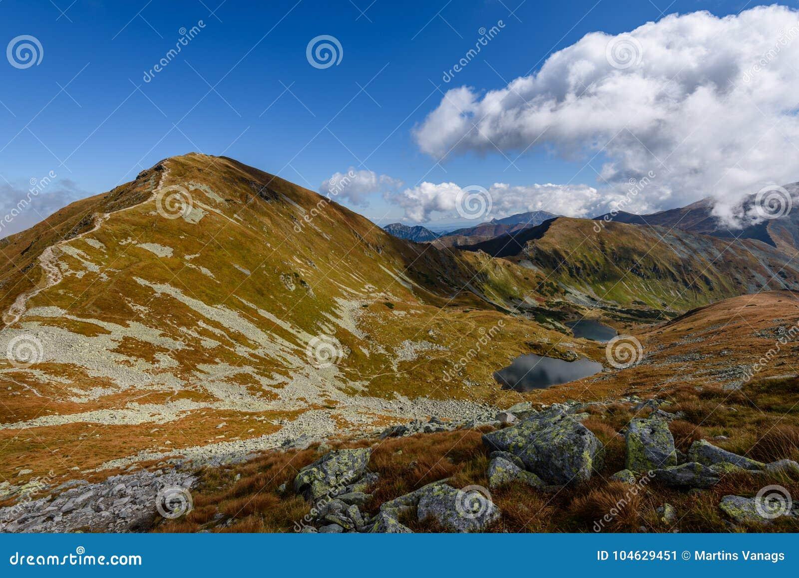 Download De Rotsachtige Mening Van Het Berg Piekgebied In Slowakije Stock Afbeelding - Afbeelding bestaande uit nevelig, berg: 104629451