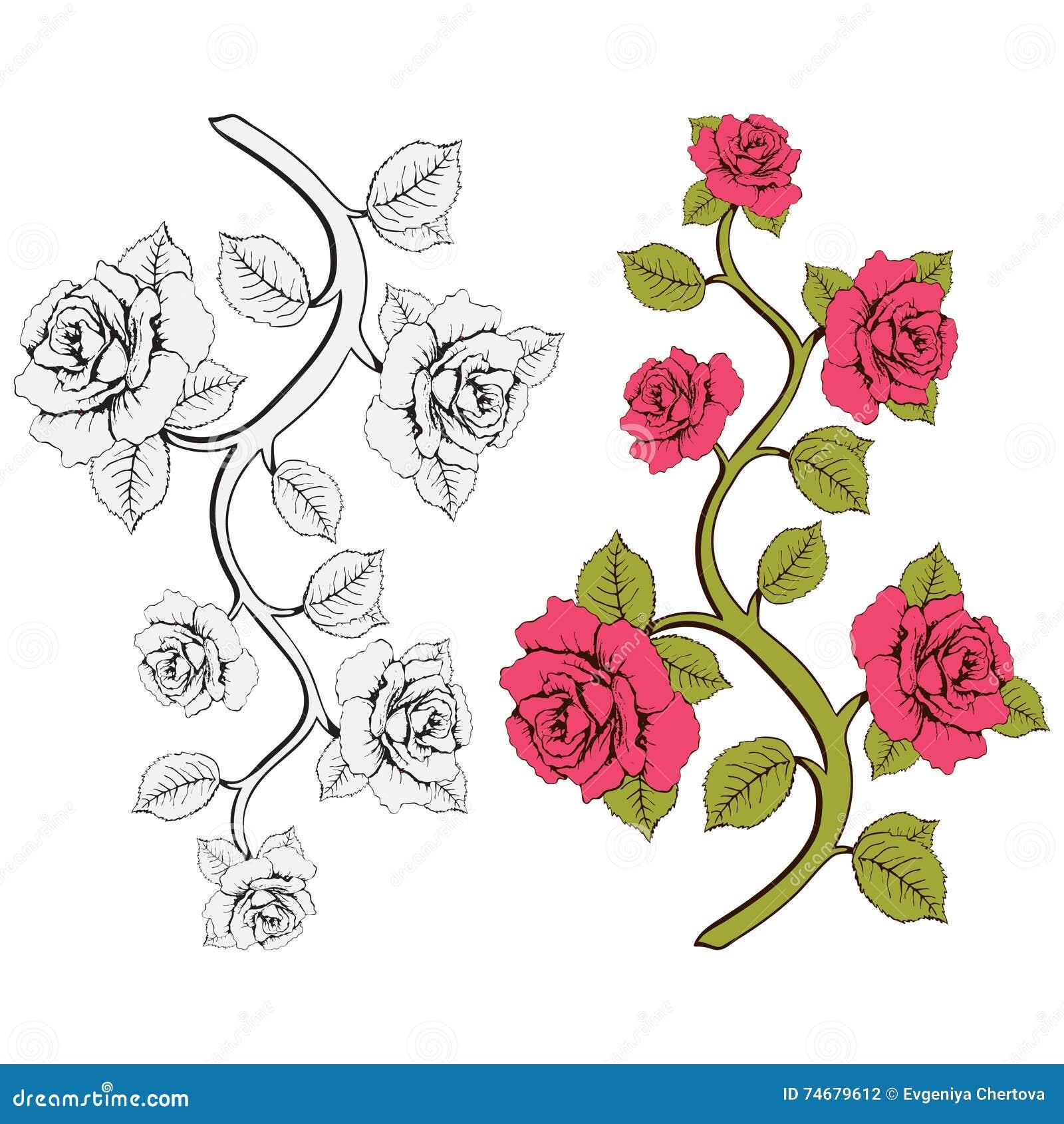 De rozen van de bloemtak Reeks roze en witte takken Bloemendruk