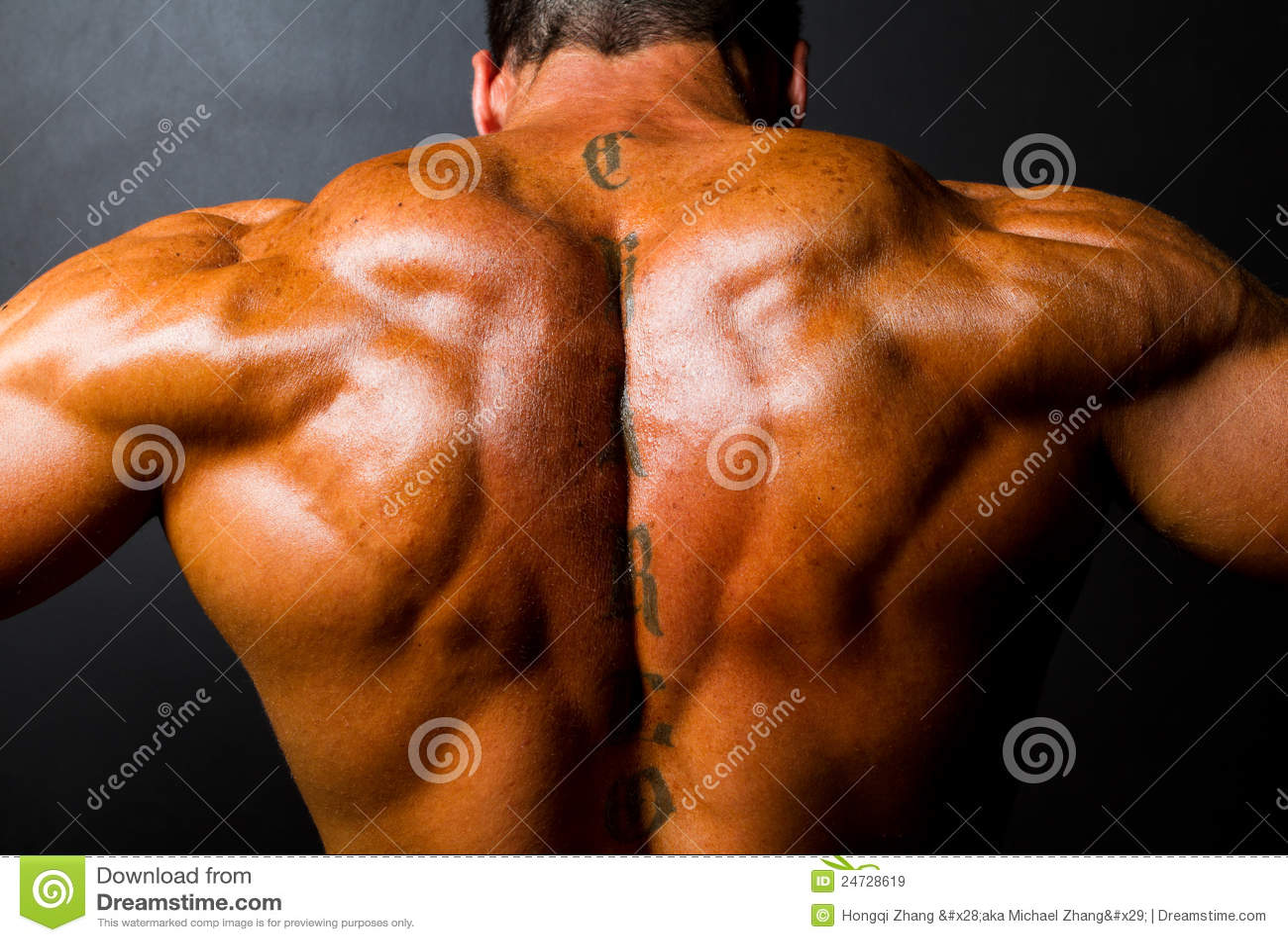 De rug van de spierbodybuilder