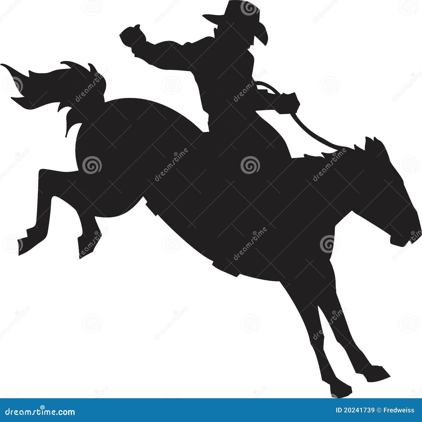 De Ruiter van het wild paard