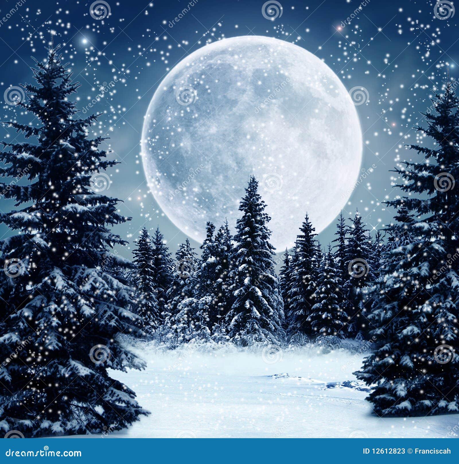 De scène van de winter