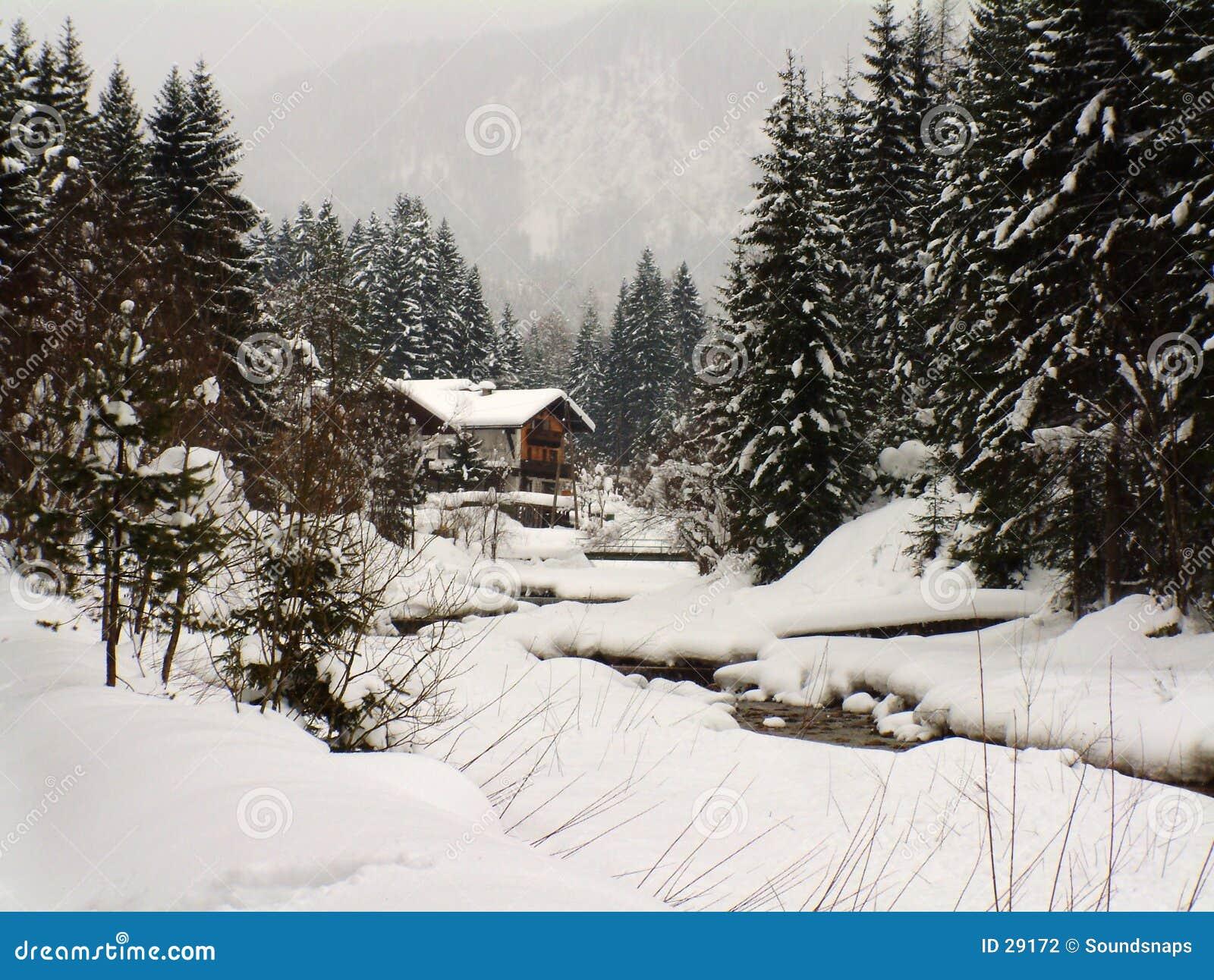 De scène van de winter in Oostenrijk