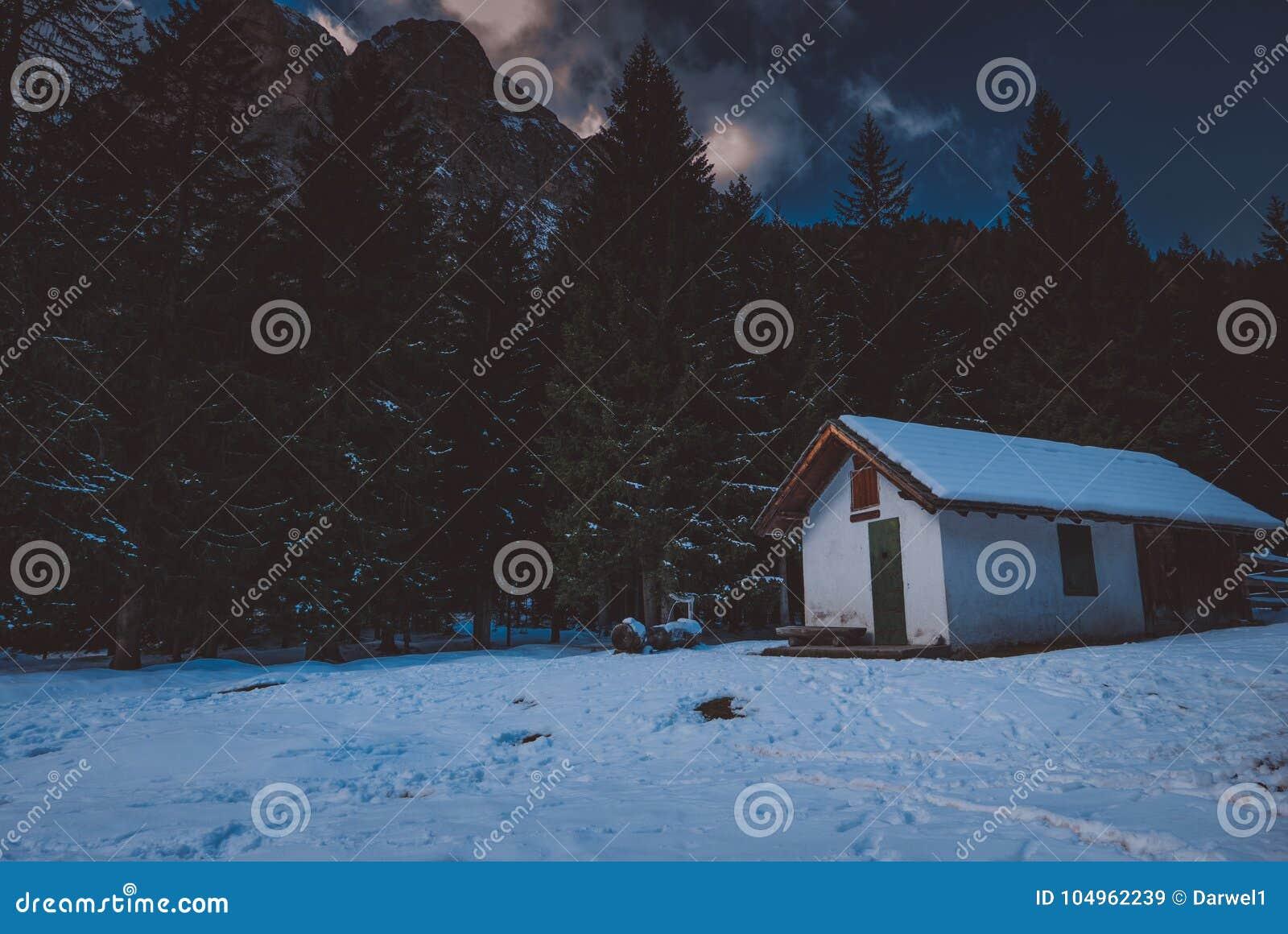 De scène van de de winternacht in de bergen, chalet in de bomen