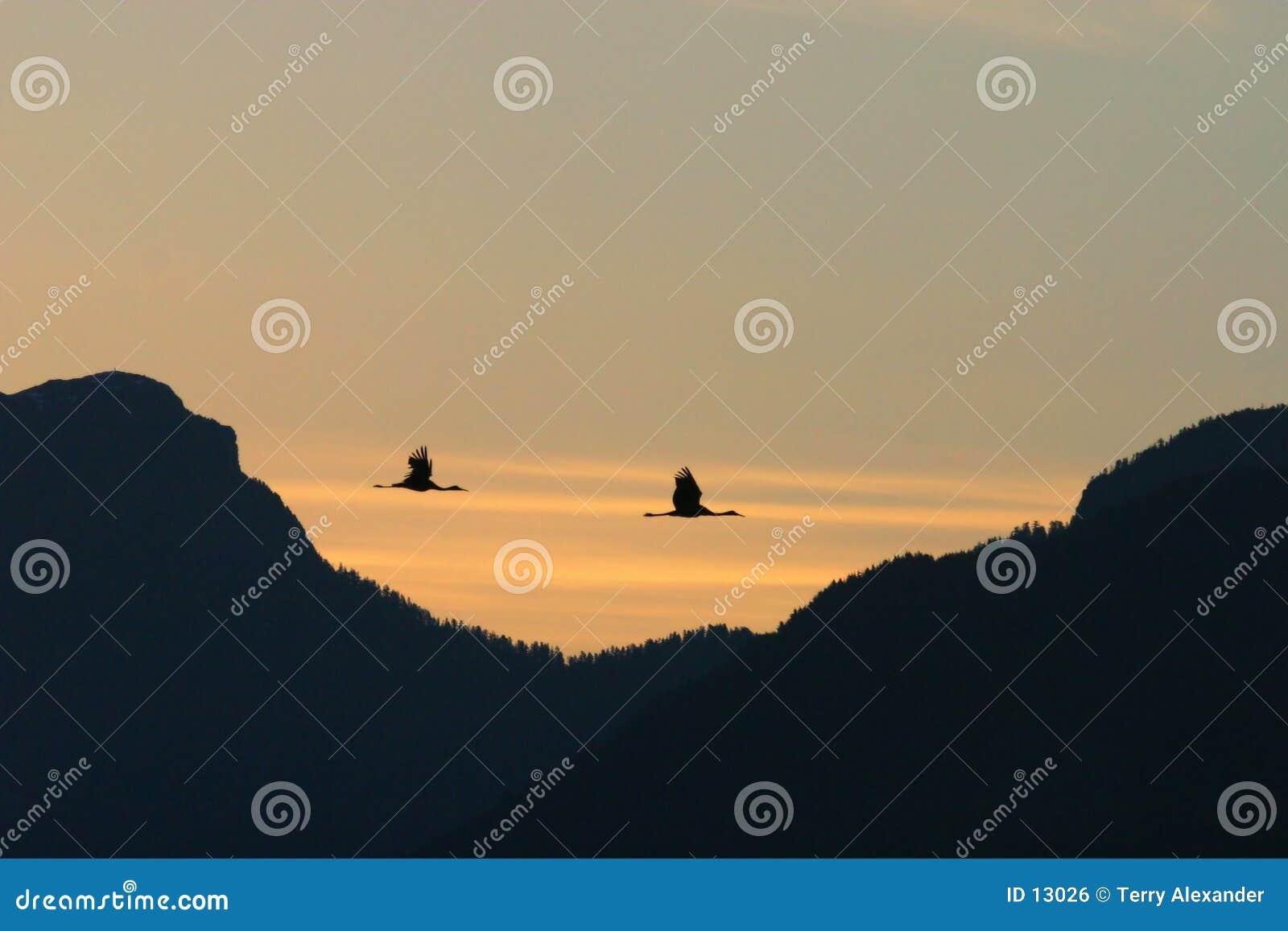 De schaduwen van de zonsopgang