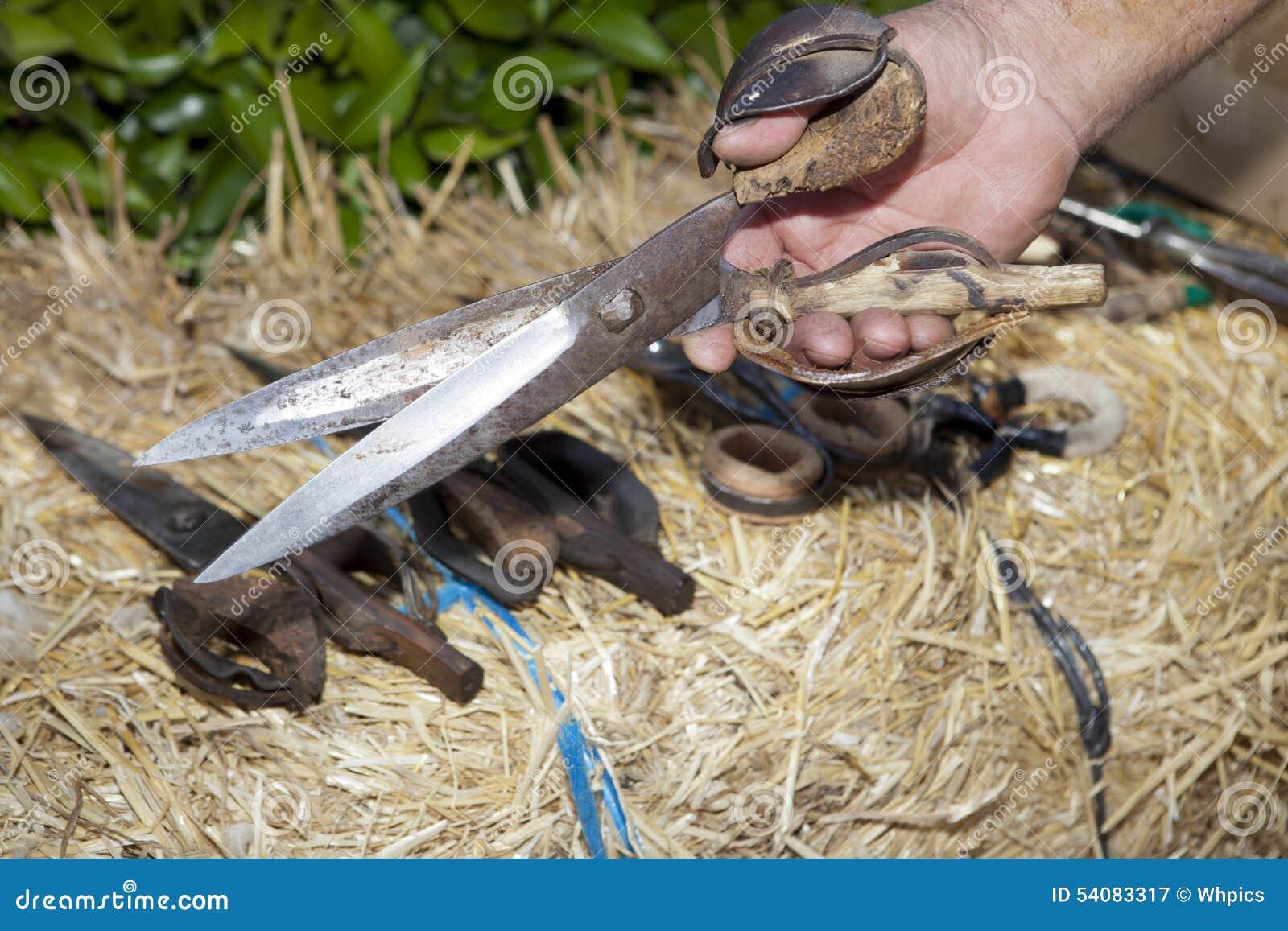 De scherende schaar van de handholding
