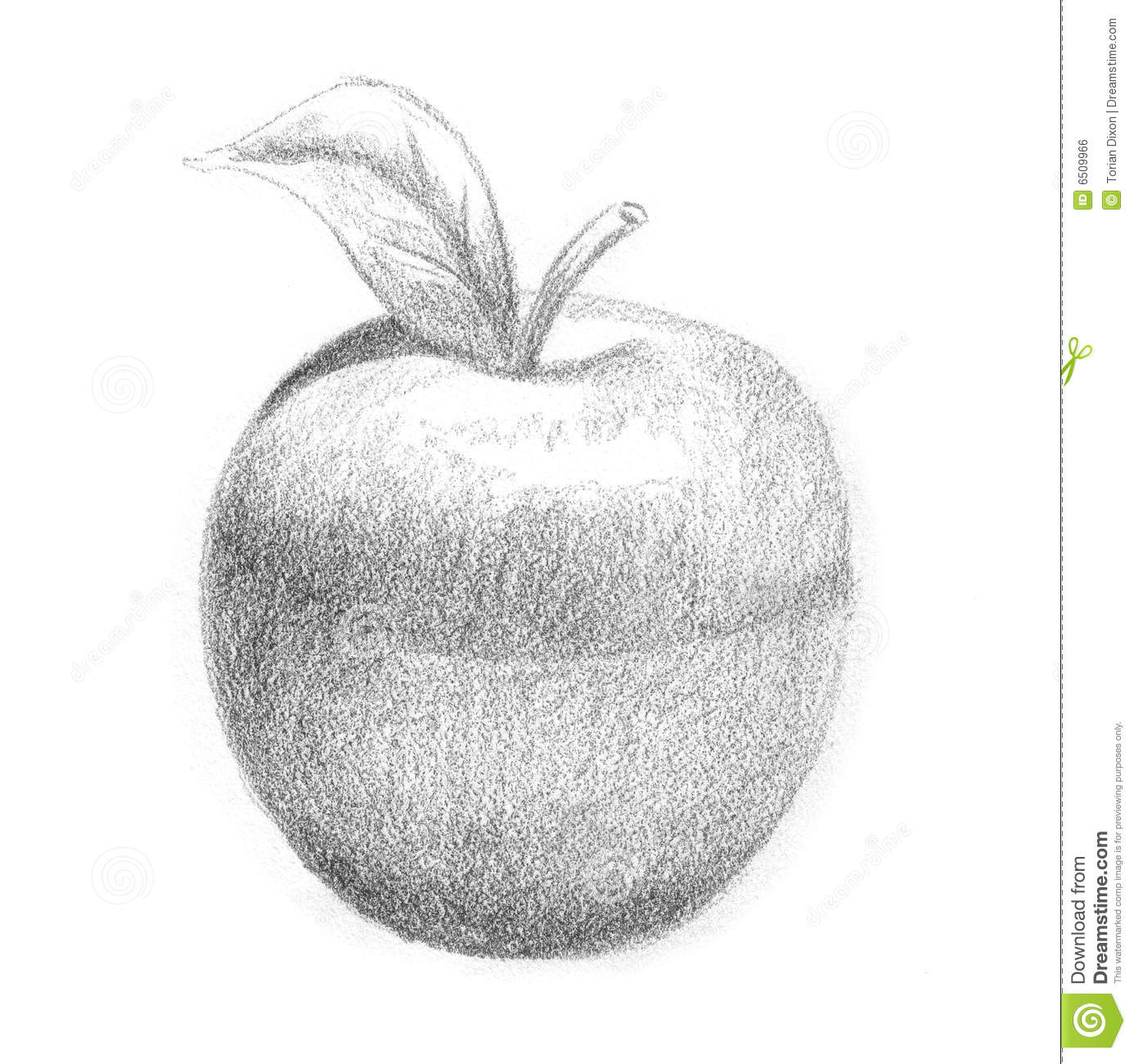 how to draw an apple step by step with shading