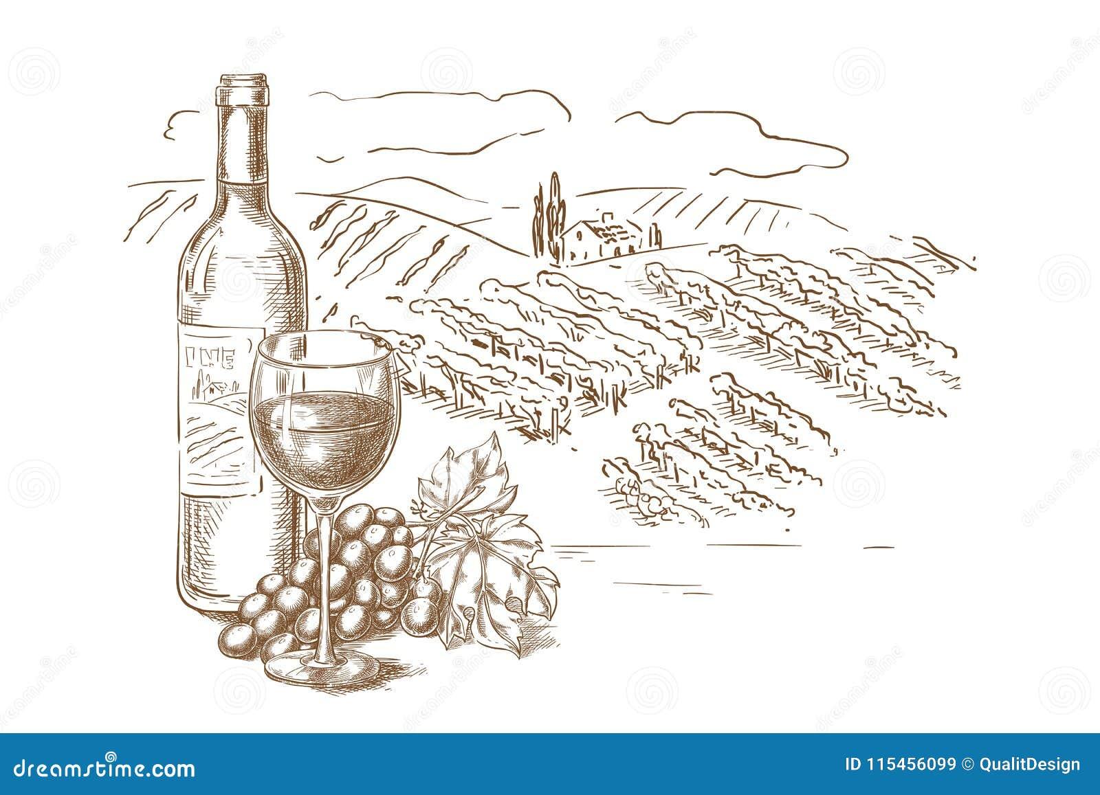De schets vectorillustratie van het wijngaardlandschap Rode wijnfles, glazen, wijnstok, de hand getrokken elementen van het etike
