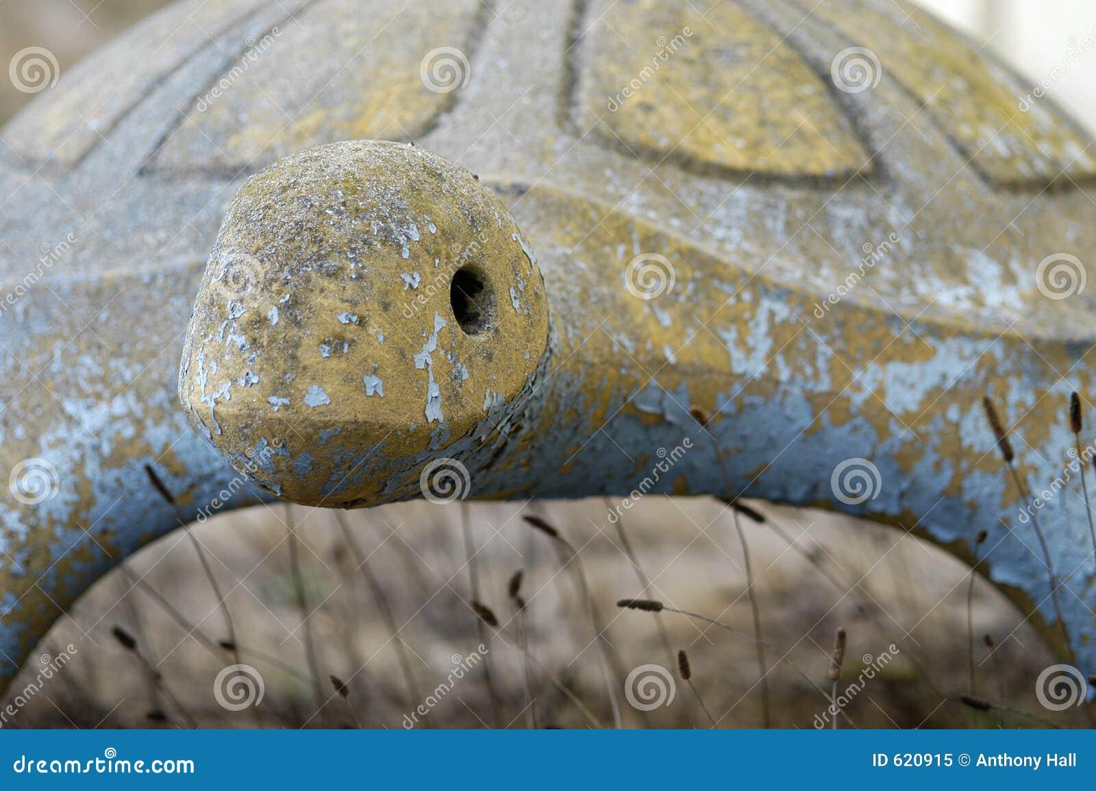 De schildpadgezicht van de steen