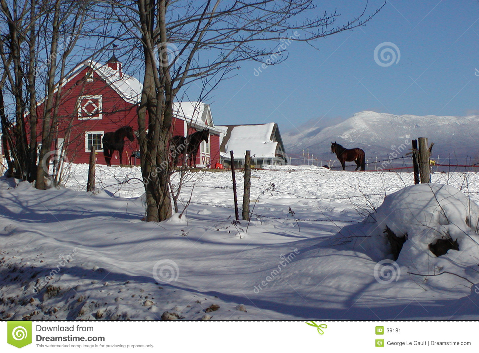 De Schuur van het Paard van Vermont