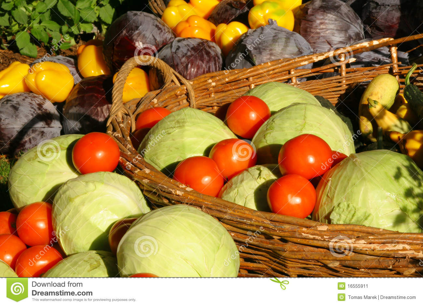 De seizoengebonden groente van het landbouwbedrijf