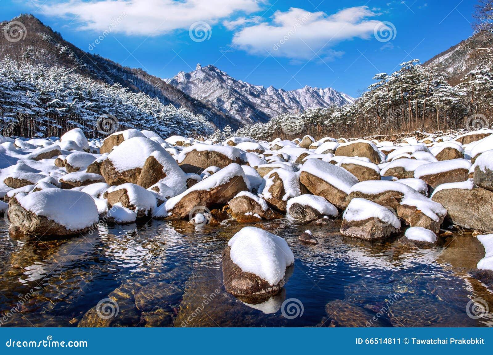 De Seoraksanbergen wordt behandeld door sneeuw in de winter, Korea