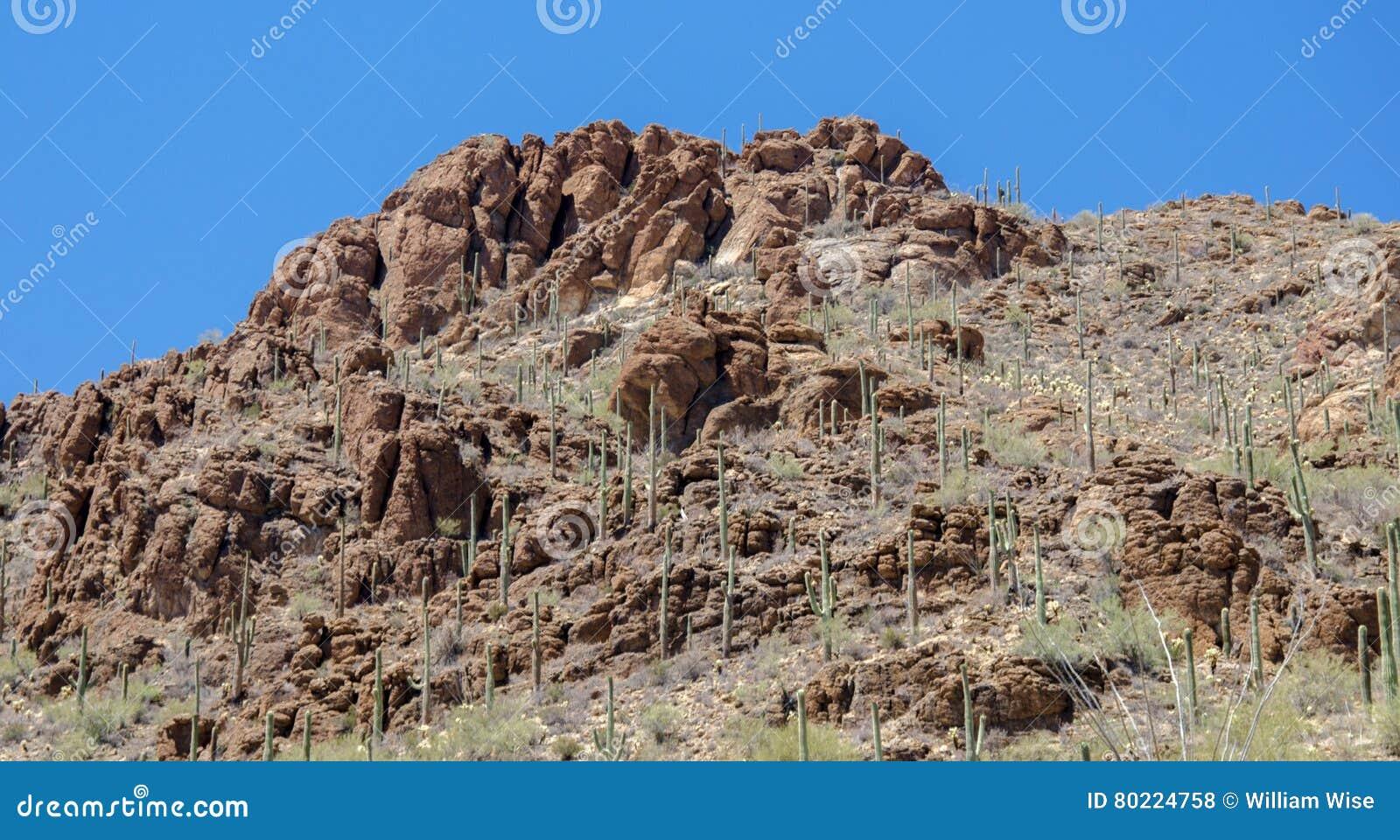 De Sleep Tucson Arizona van de poortenpas