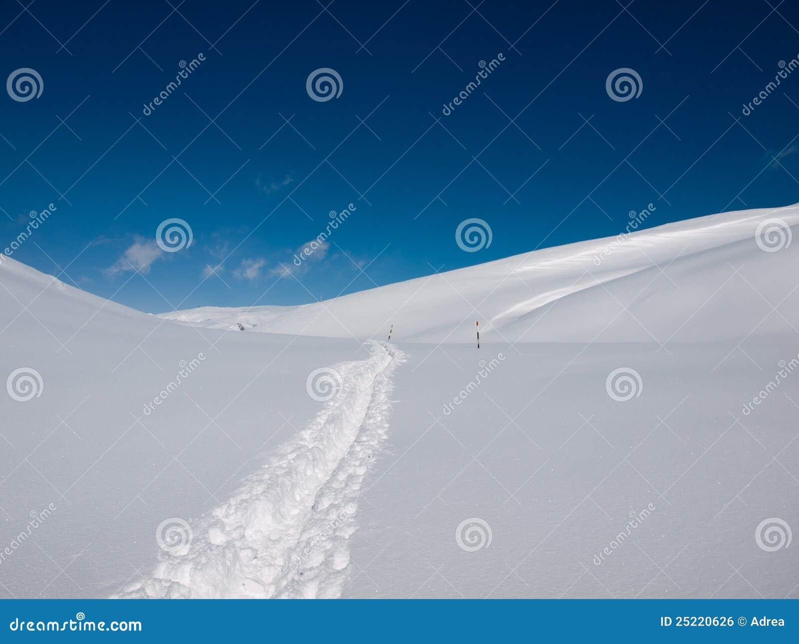De sneeuw van de lawine
