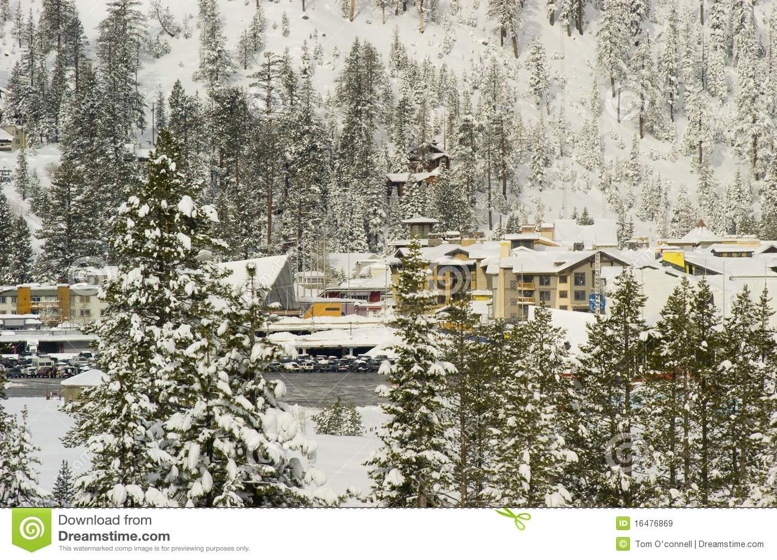 De sneeuw van de Vallei van de squaw