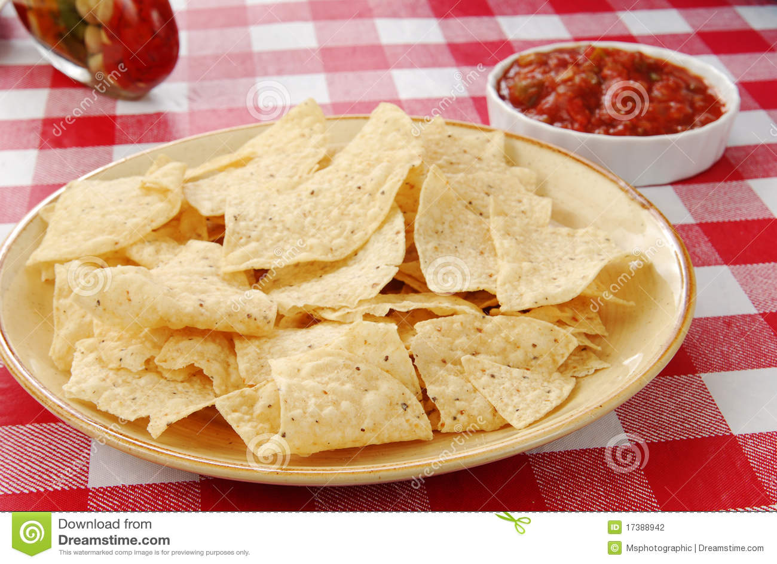 De spaanders van de tortilla met salsa