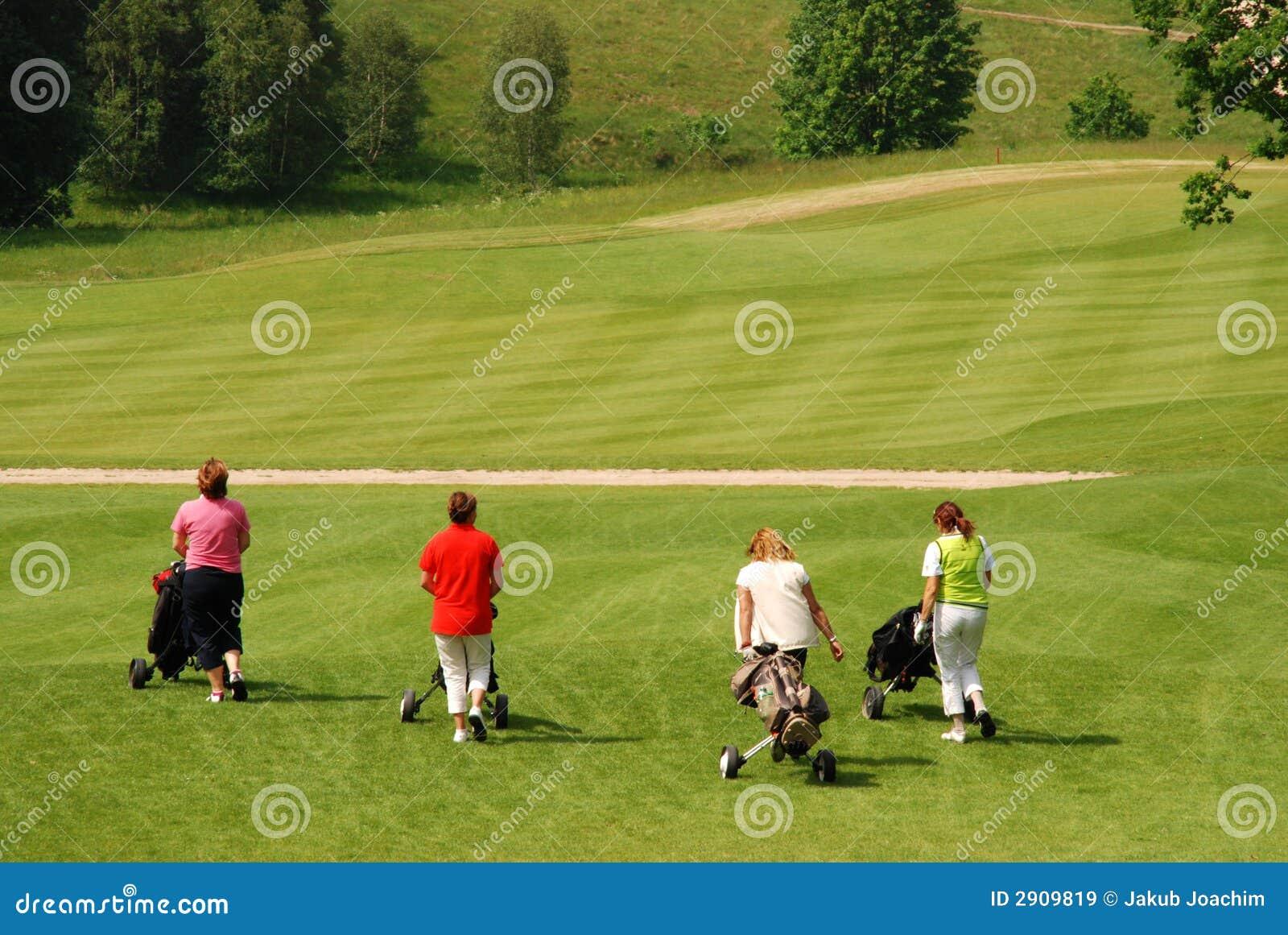 De spelers van het golf
