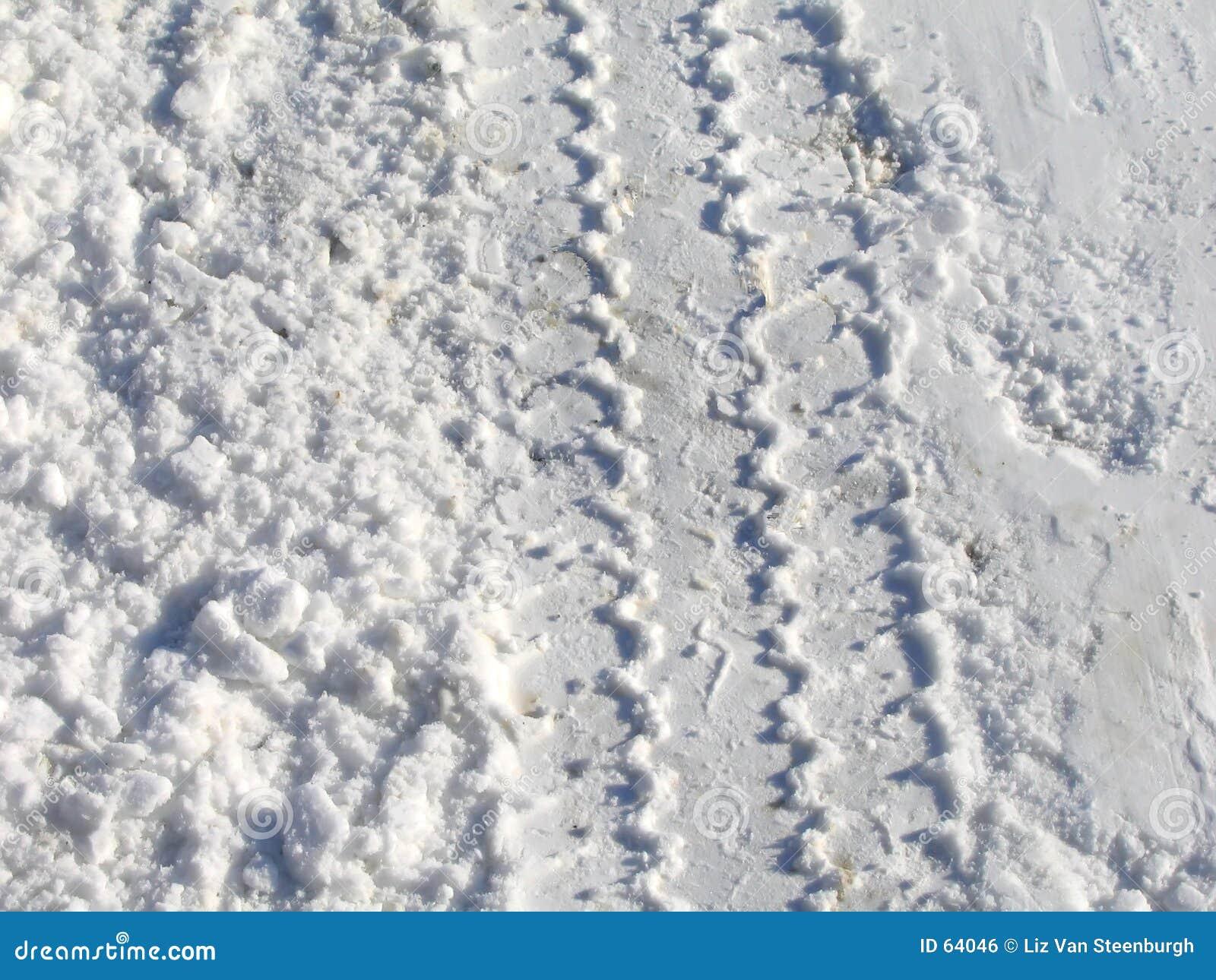 De Sporen van de sneeuw