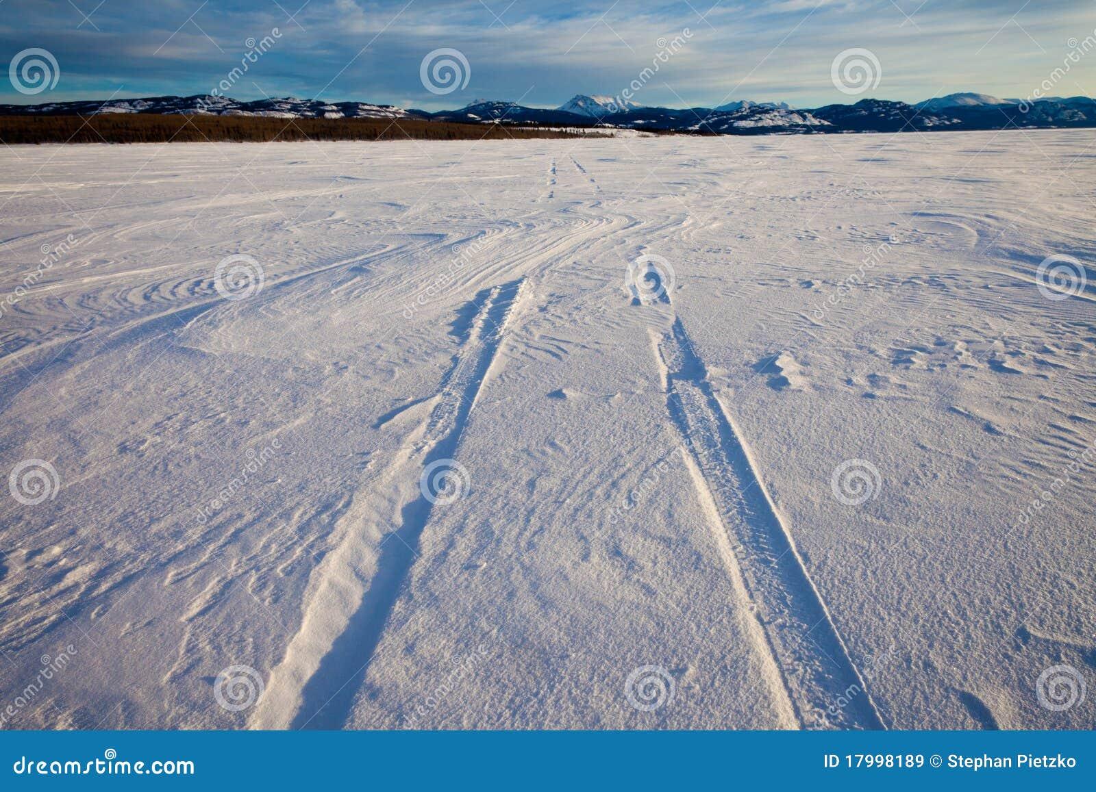 De sporen van de sneeuwbank en van de band