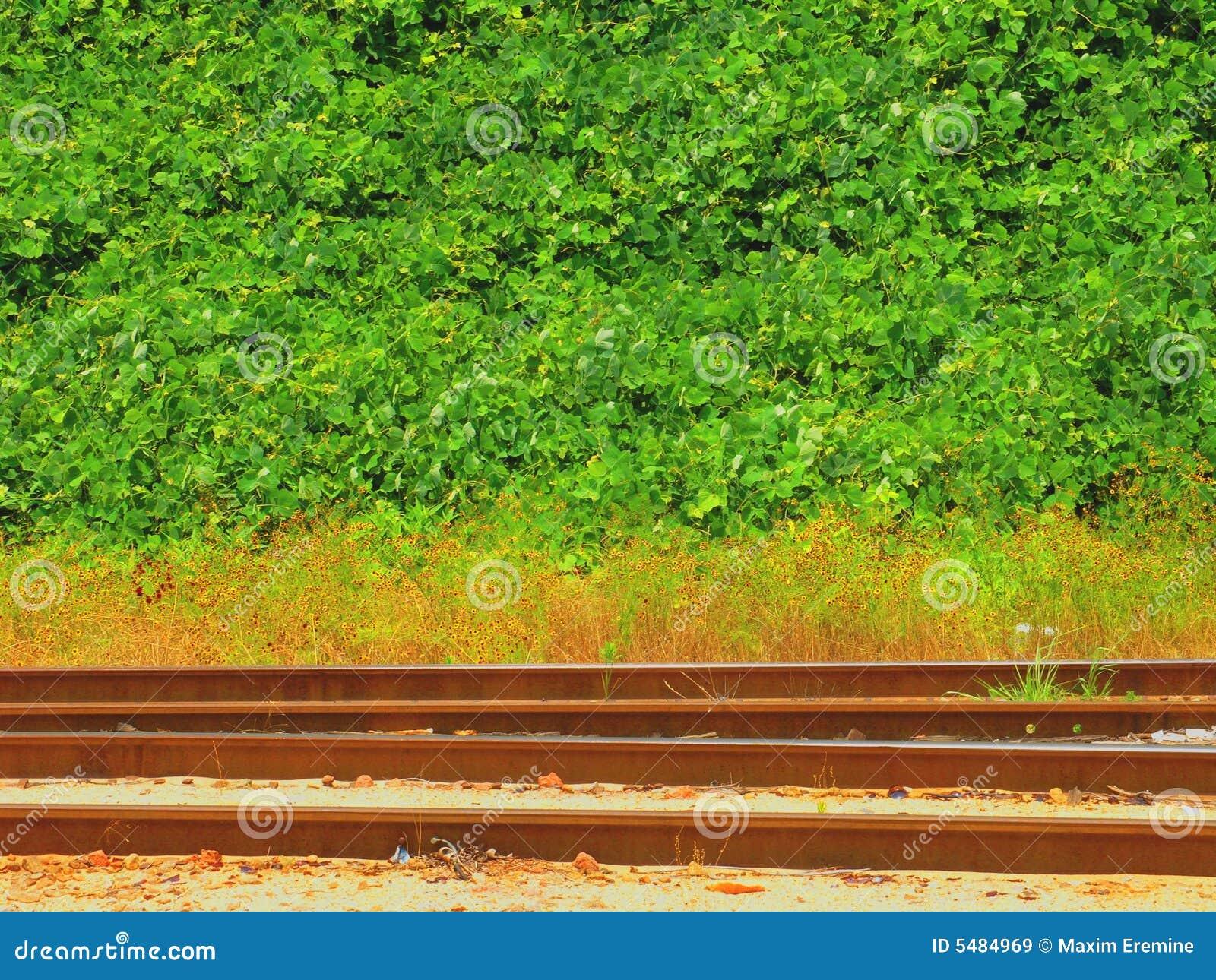De Sporen van de spoorweg in Georgië