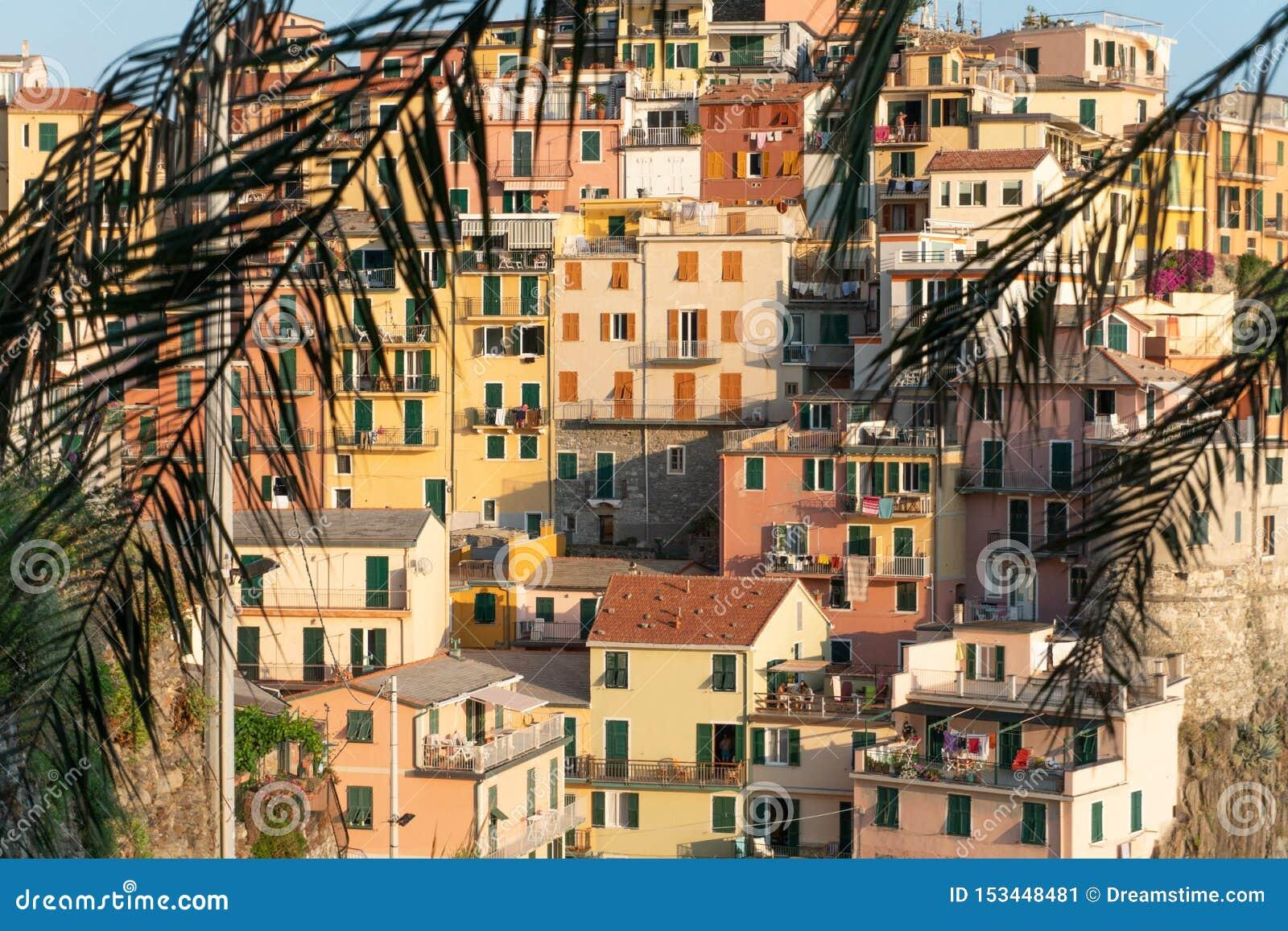 De stad van manarola door palm doorbladert