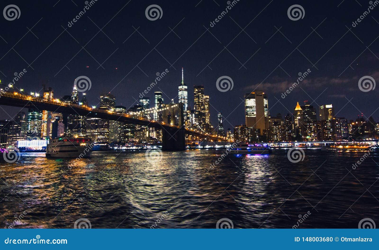 De Stad van New York van de Brug van Brooklyn