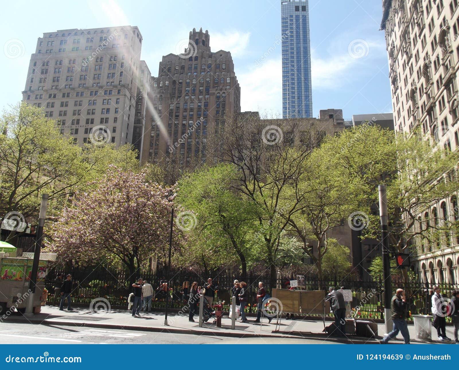 De Stadsschoonheid van New York