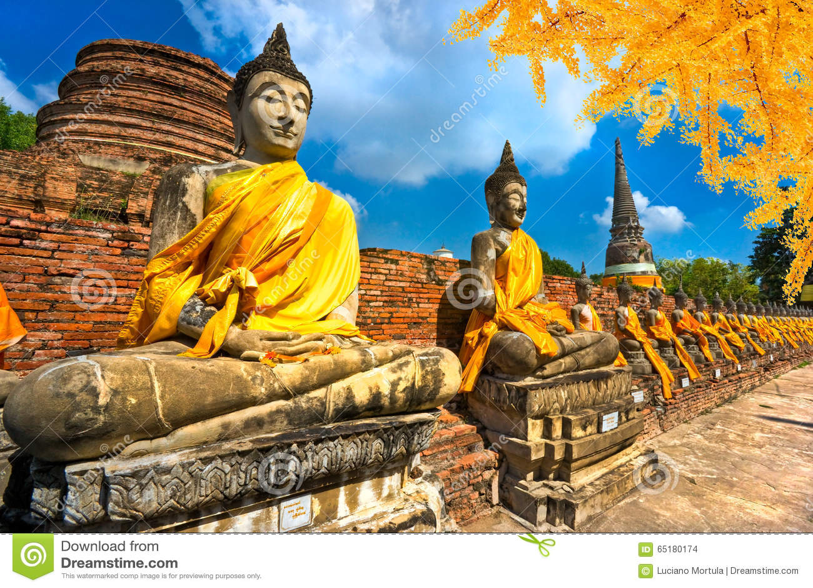 De Standbeelden van Boedha in Ayutthaya, Thailand,