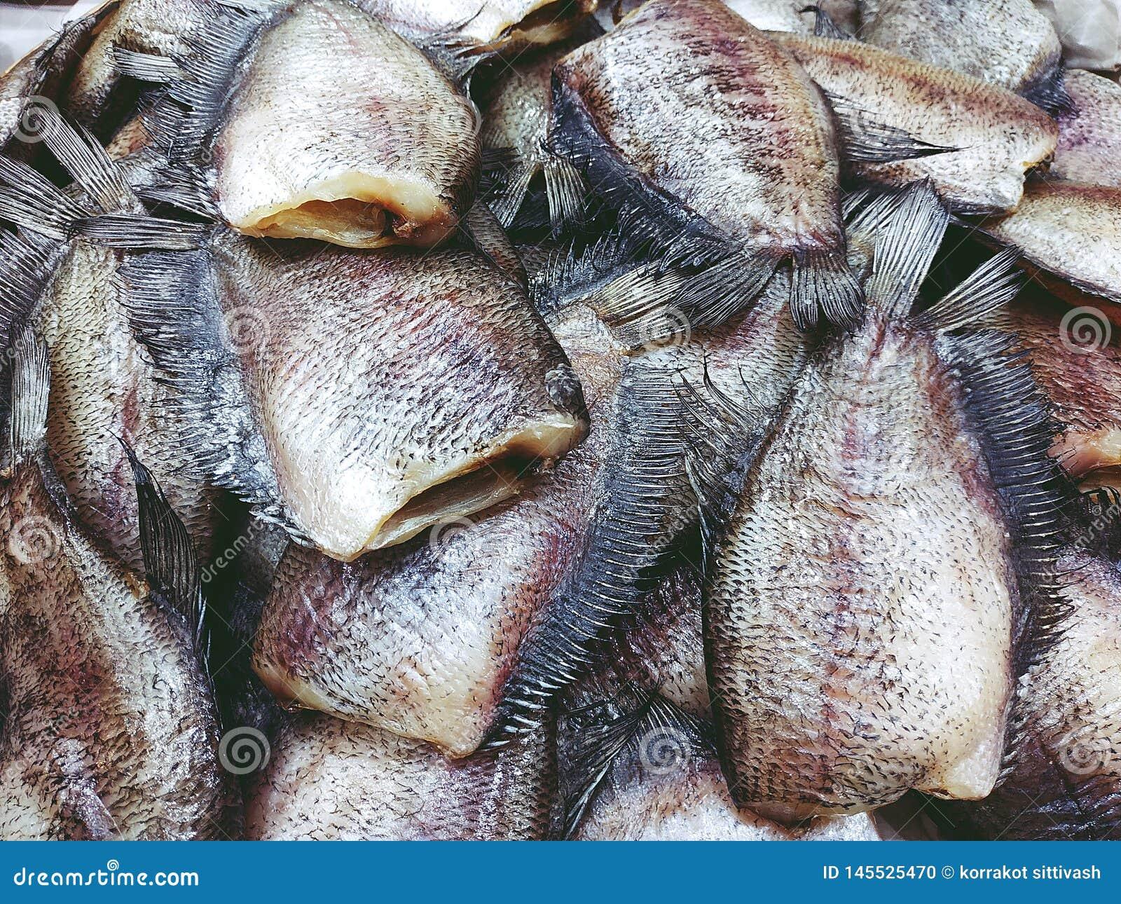 De stapel van Droge Trichogaster-borstspiervissen sluit omhoog