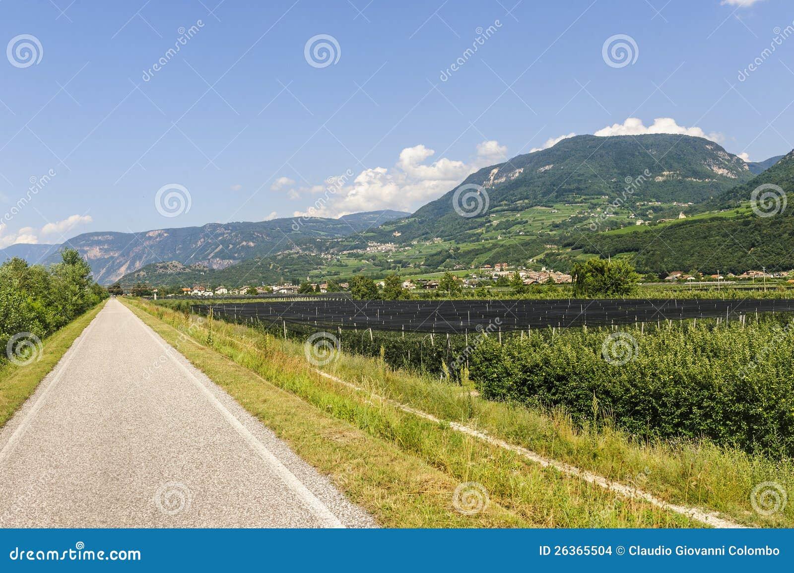 De steeg van de cyclus van de vallei Adige