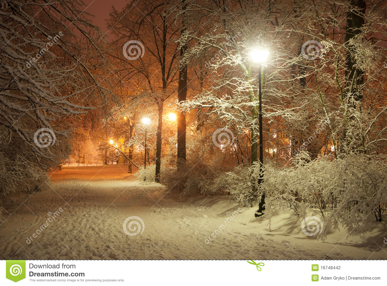 De steeg van de winter bij nacht