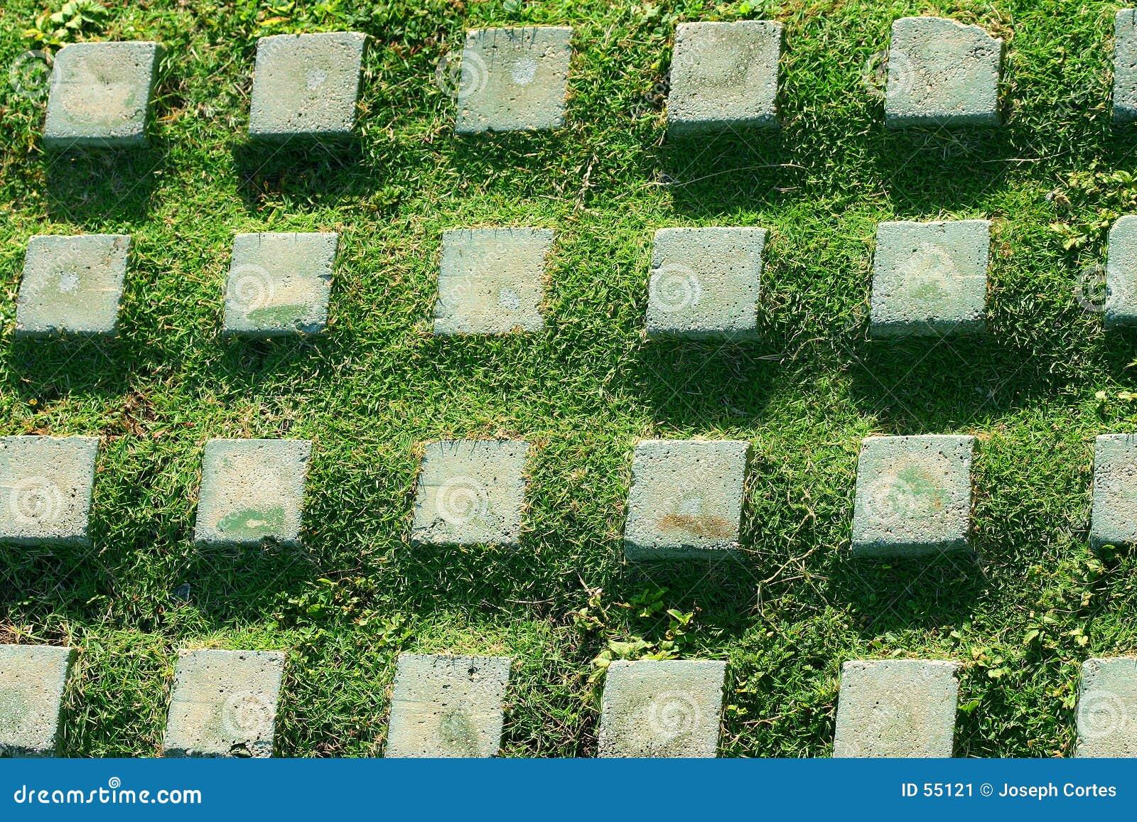 De steen en het gras van het patroon