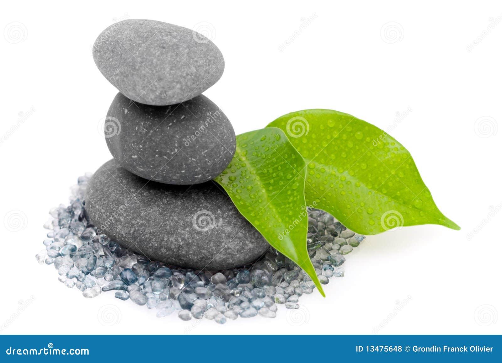 De stenen en de bladeren van Zen