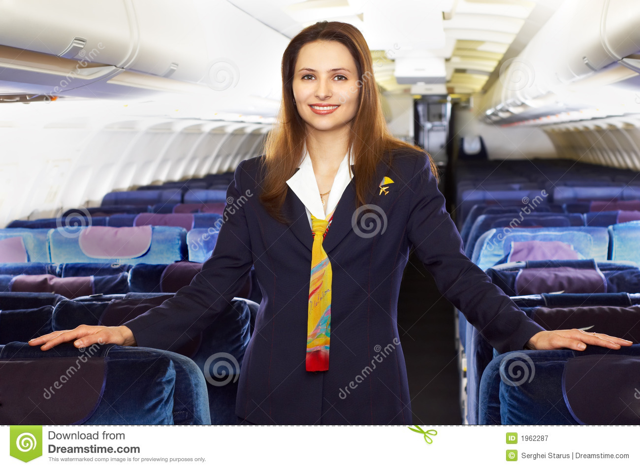 De stewardess van de lucht (stewardess)