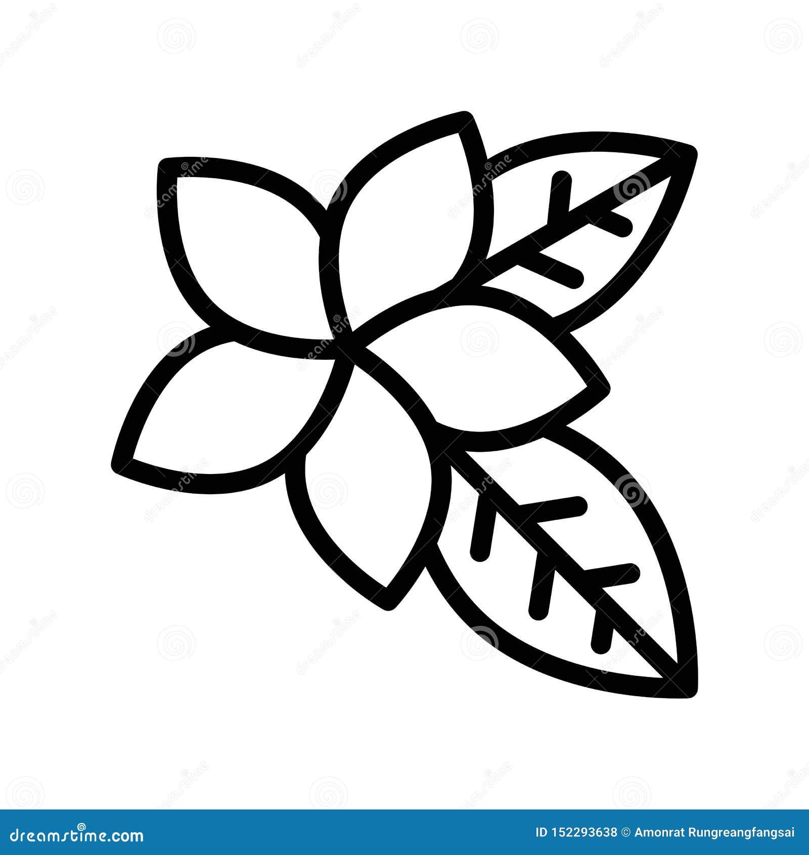 De stijlpictogram van de Plumeria vector, tropisch verwant lijn