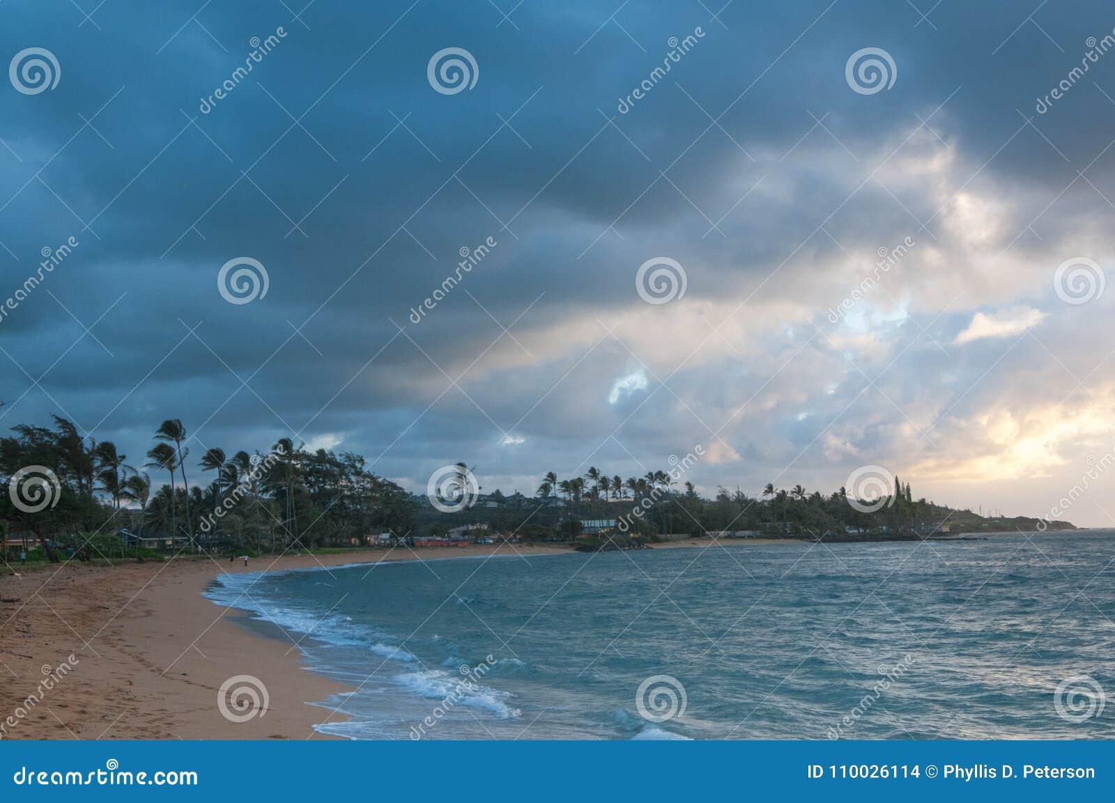 De strandvoorzijde bij Kapaa-Kusten op Kauai waar de Palmen in de wind van de Stille Oceaan slingeren