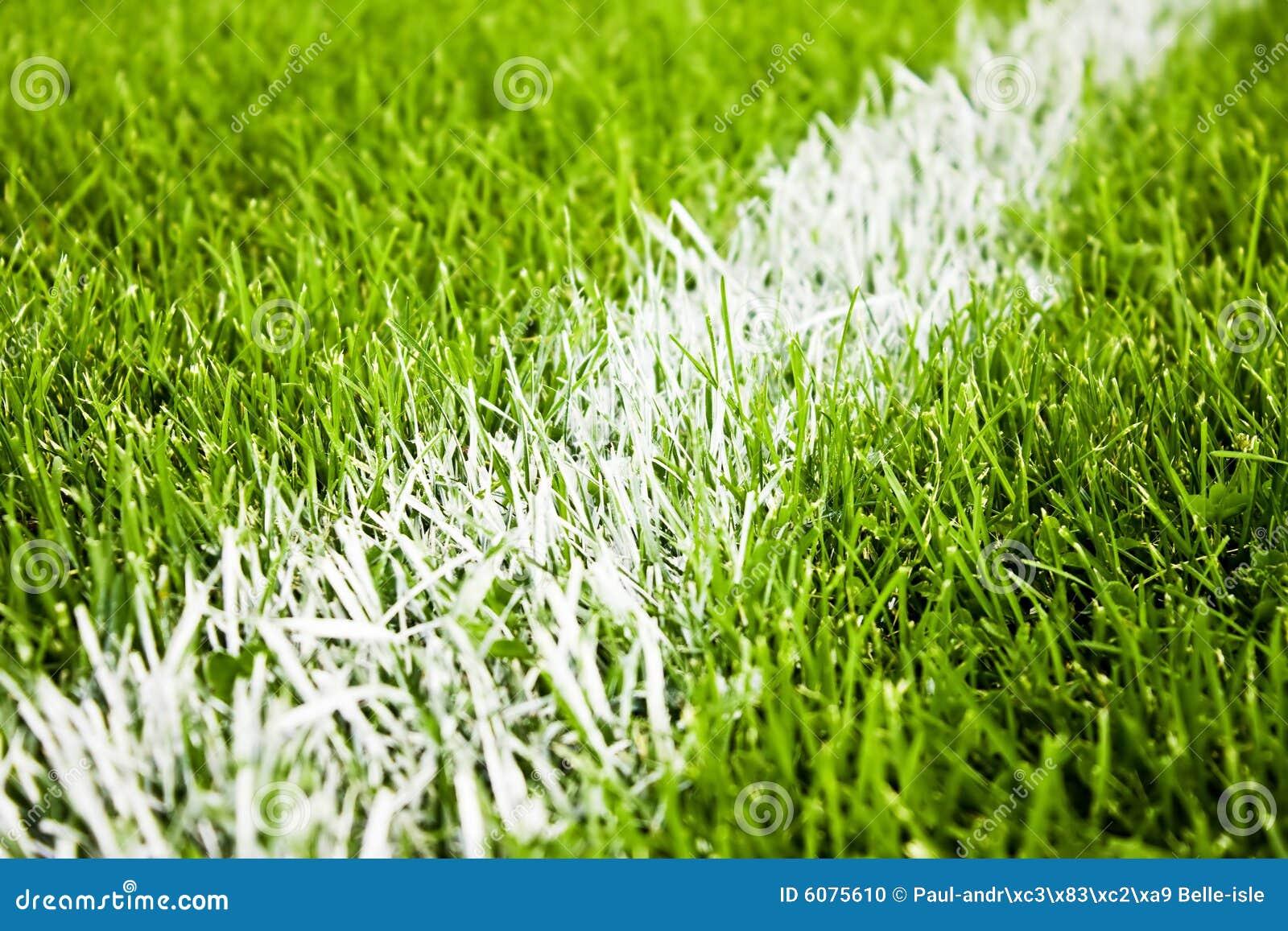 De strepen van het voetbal of van de voetbal