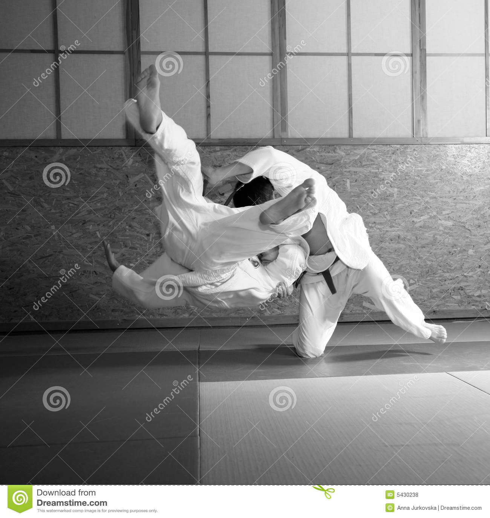 De strijd van het judo