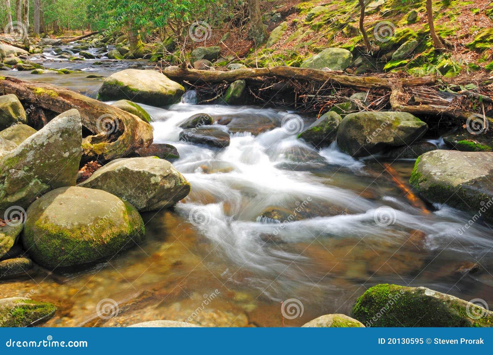 De stroom van de berg in de lente