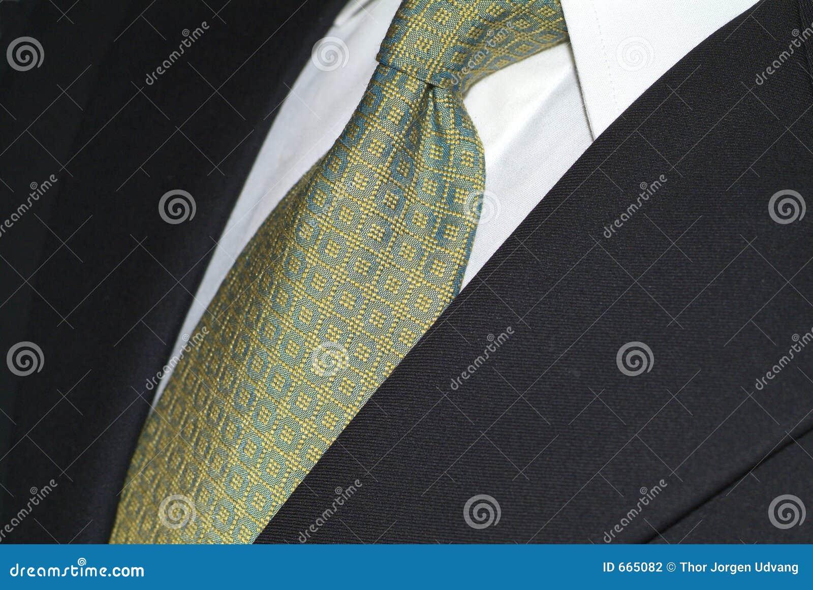 De stropdas van de zijde en donker kostuum