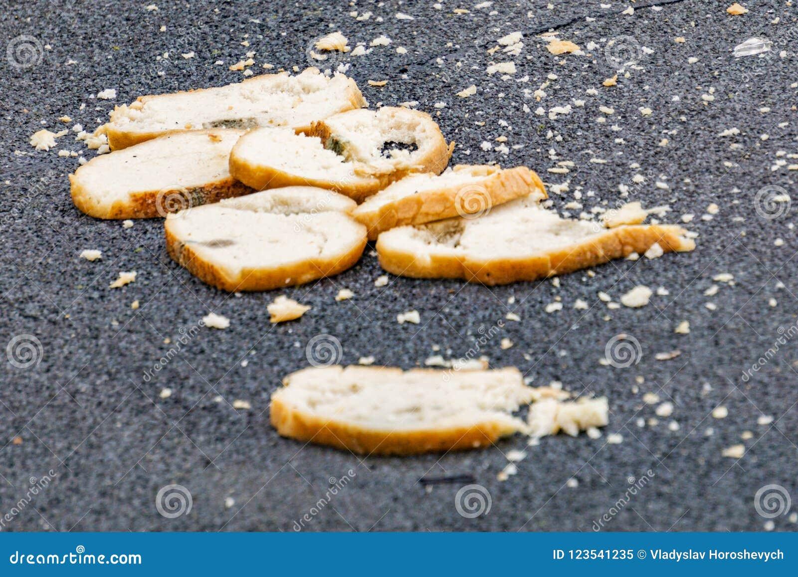 De stukken van brood liggen op de weg, het concept honger, behandelen voedsel, bedorven brood
