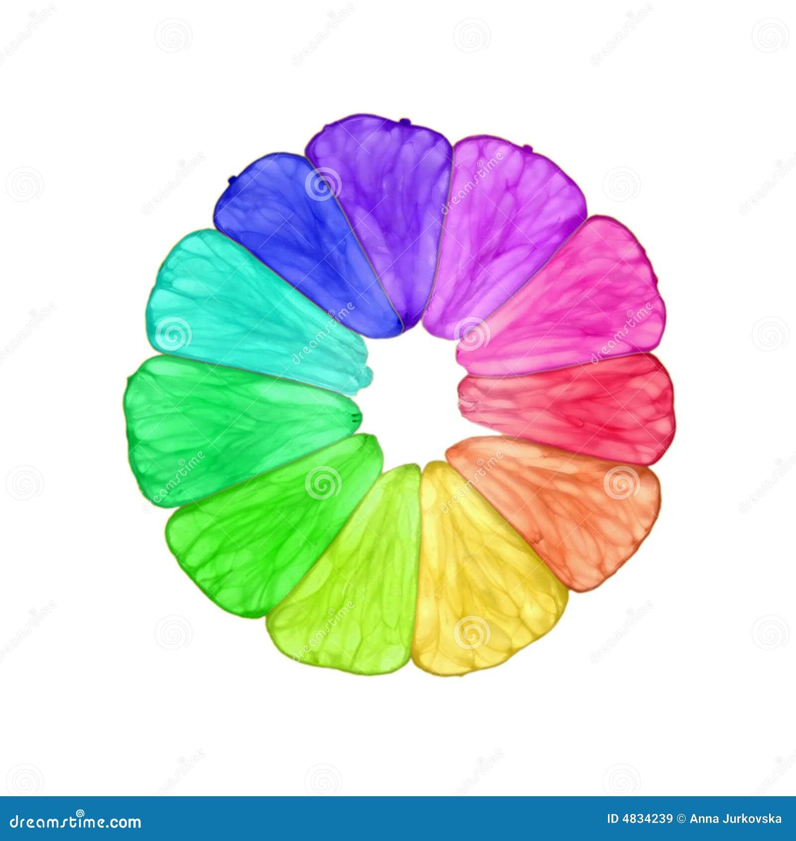 De sukade van de regenboog